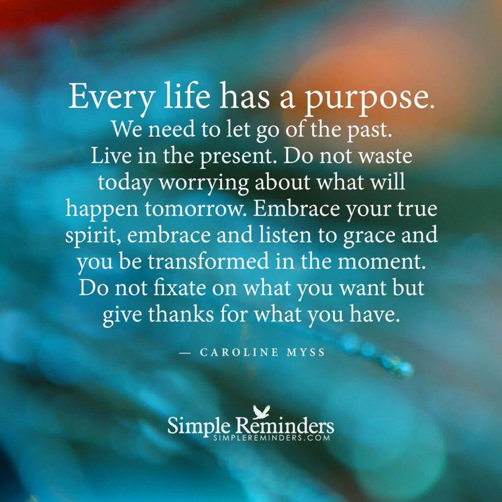 life has a purpose